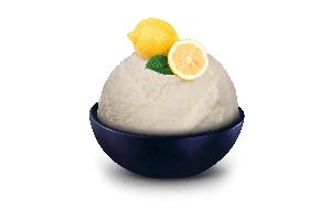 SCHÖLLER Citronový sorbet 5.0L